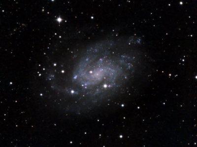 Galaxia Espiral – NGC 300