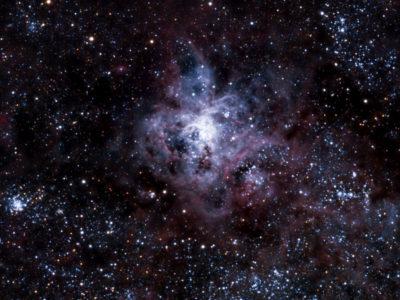 Nebulosa Tarántula – NGC 2070